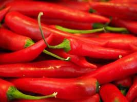 Mit Chili den Stoffwechsel ankurbeln